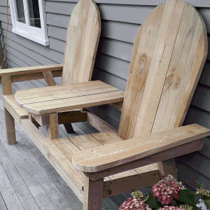 jack and jill seat